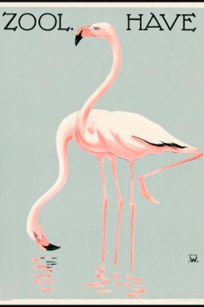 Zoologisk have - Flamingoer - Palle Wennerwald