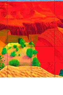 David Hockney - Louisiana - A closer grand canyon