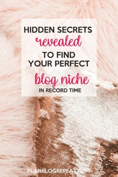 Hidden secrets to find your perfect niche.