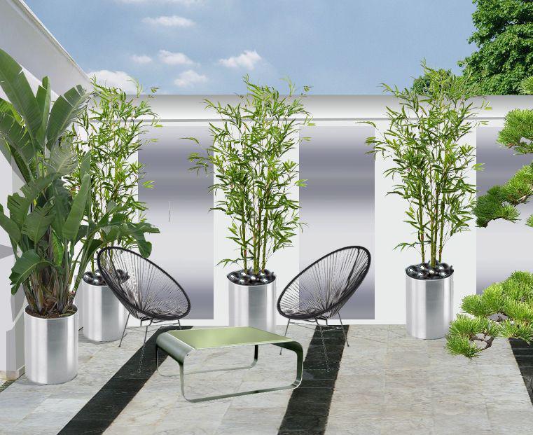 jardins pour patios plans