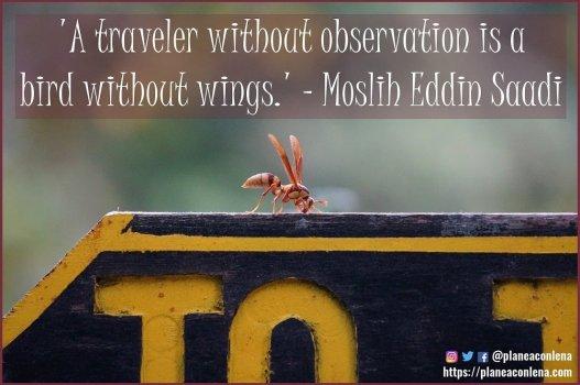 'Un viajero que no observa es un pájaro sin alas.' - Moslih Eddin Saadi