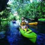 negocio ecoturismo