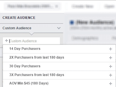 segmentacao facebook ads 13