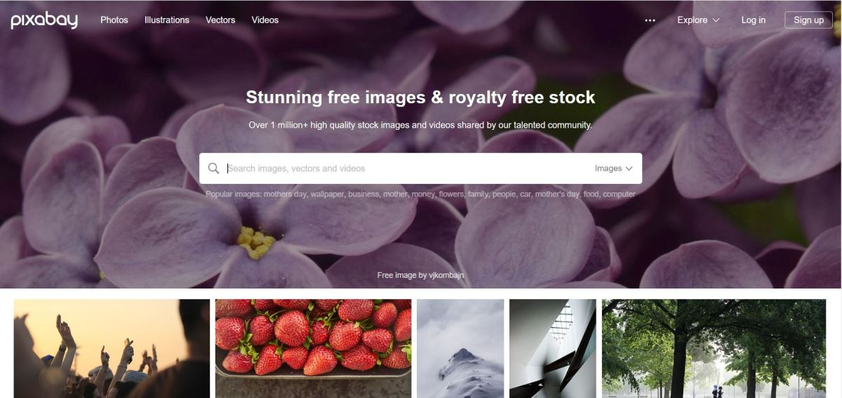 banco de imagens gratuito