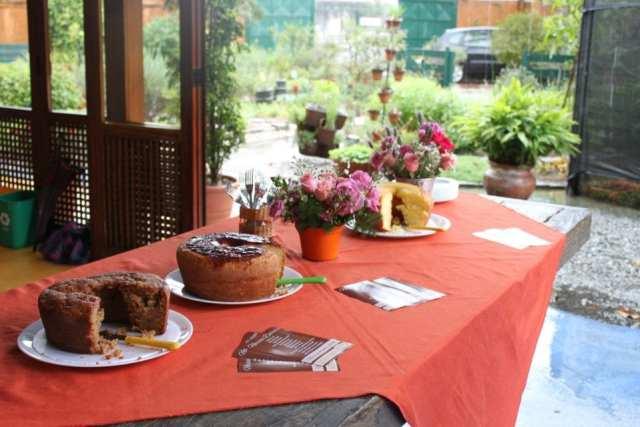 Festa com bolos caseiros (noivado, chá de panela etc.). Foto: Bolo À Toa.