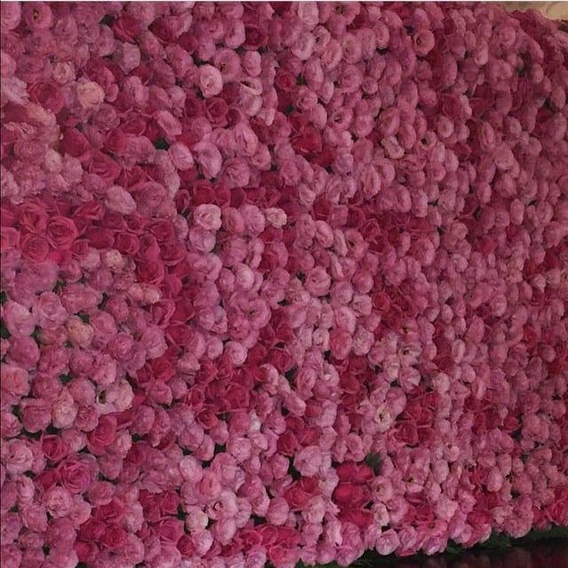 Painel de rosas no casamento de Preta Gil e Rodrigo Godoy.