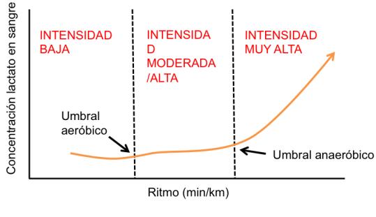 Entrenamiento running a umbral láctico