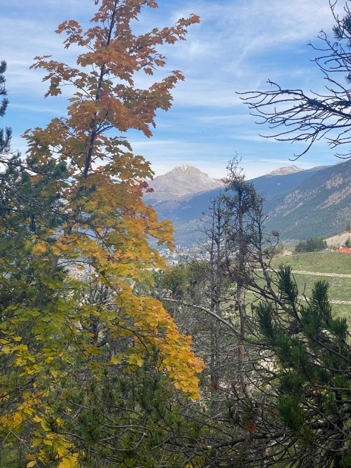 fall foliage in france