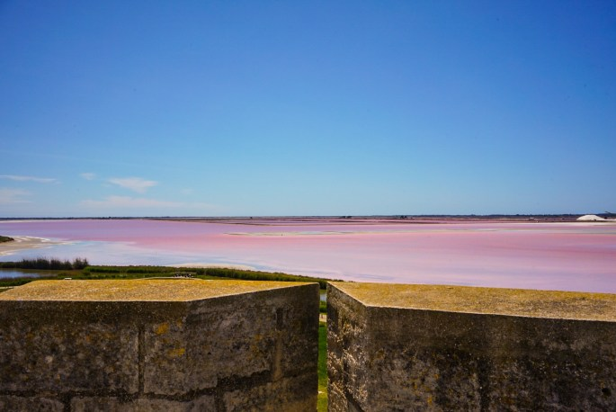 pink salt flats found in Aigues-Mortes in France