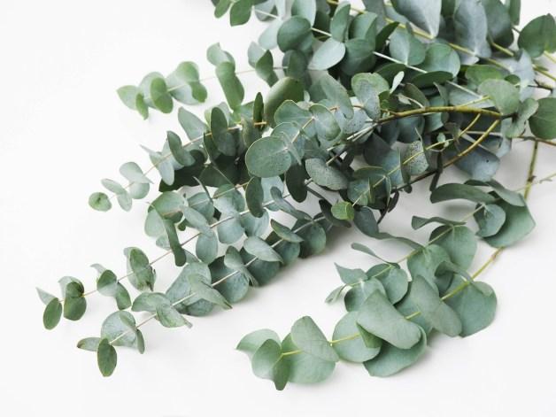 Une déco facile avec des plantes artificielles.