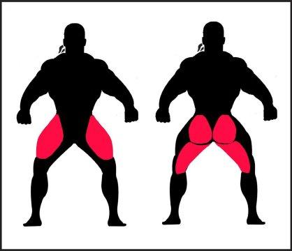 box-squats-strenght