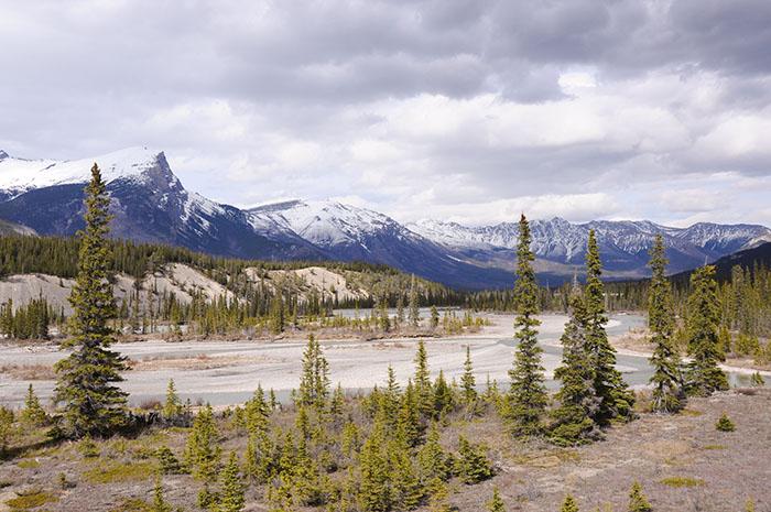 Les rocheuses : Route des glaciers
