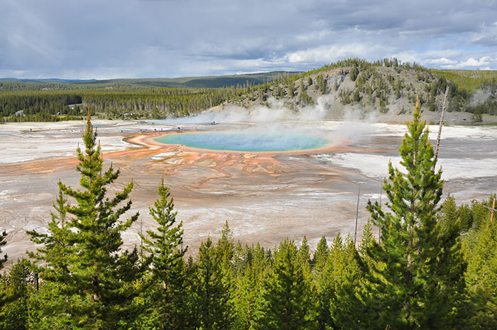 Yellowstone National Park : Grand Prismatic Spring