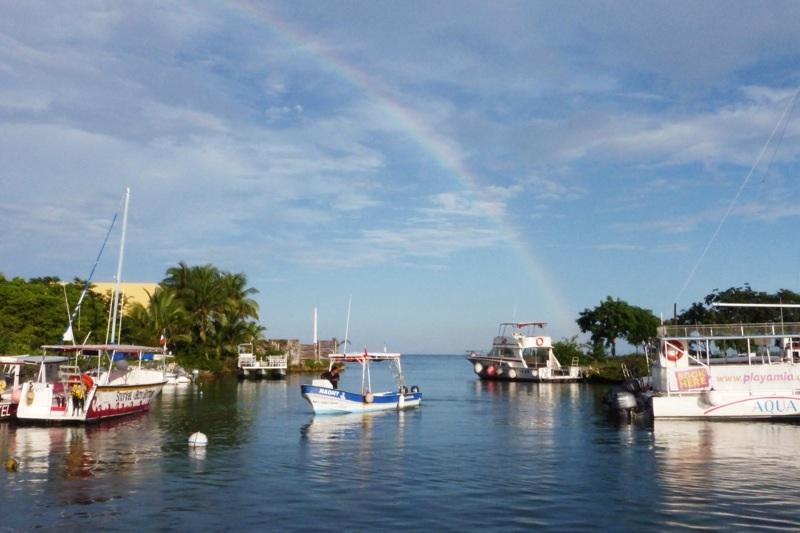 Écovolontariat : Préserver la vie marine à Cozumel