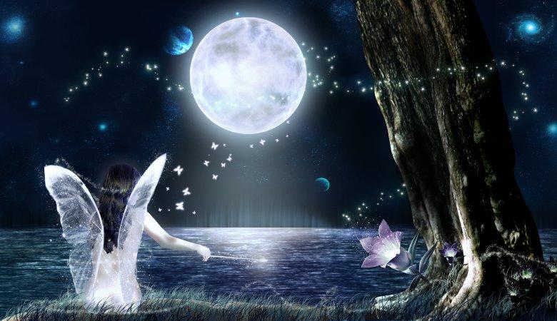 Fairy-moonlight