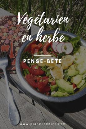 Pinterest-pense bete vegetarien
