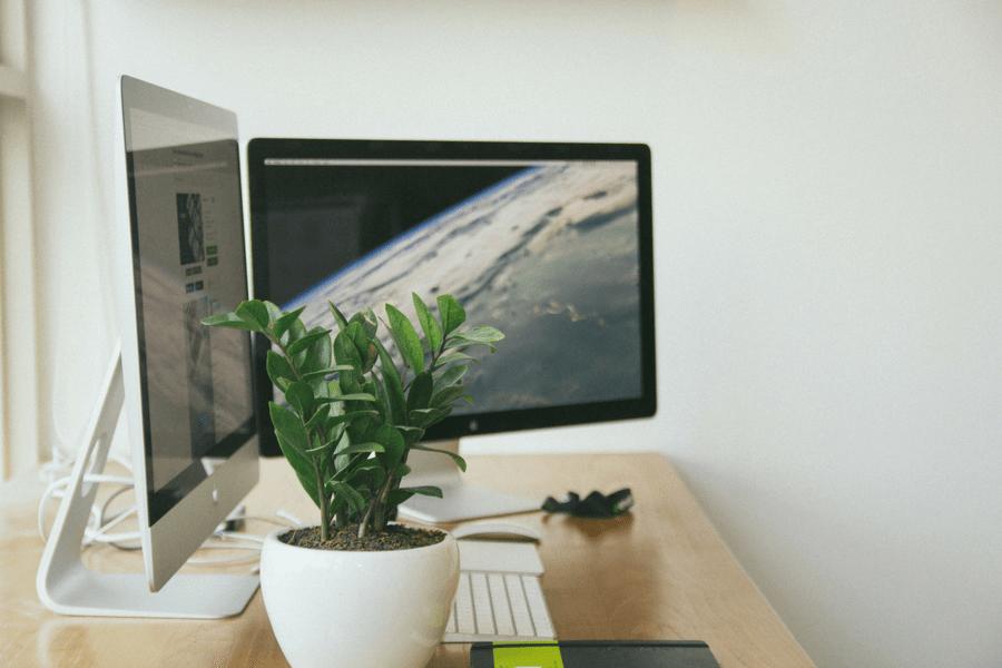 Ordinateur et plante