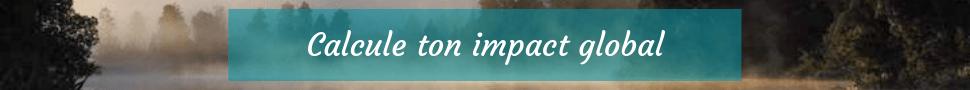Calcul-impact-carbone