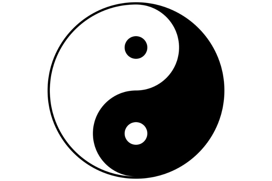 Read more about the article Au delà du genre, le Yin et le Yang
