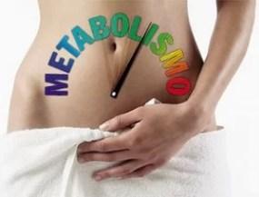 termogênicos aumentam a taxa metabólica