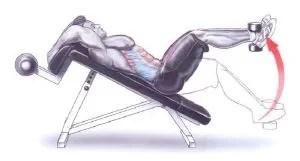 Elevação de Pernas com Inclinação