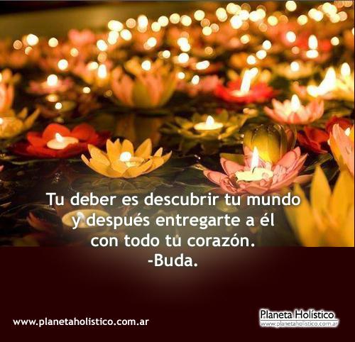Frase de Buda - Tu deber es descubrir tu mundo