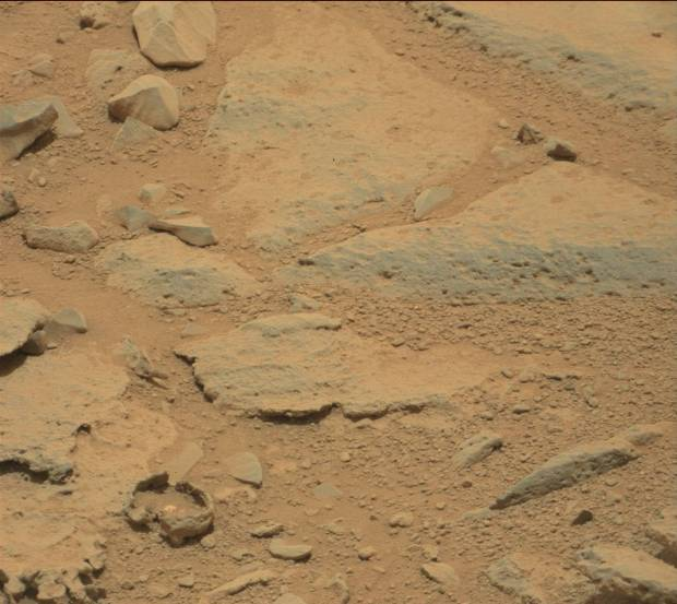 "Full-size Mastcam image from sol 309 with the ""bubble"" in the lower left corner. Credit: NASA / JPL-Caltech"