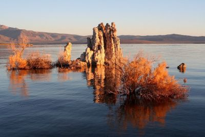 Mono Lake in California, a high-alkaline soda lake. Tufa towers of calcium carbonate have formed from the interaction of freshwater springs and alkaline lake water. Photo Credit: Brocken Inaglory/Wikimedia Commons