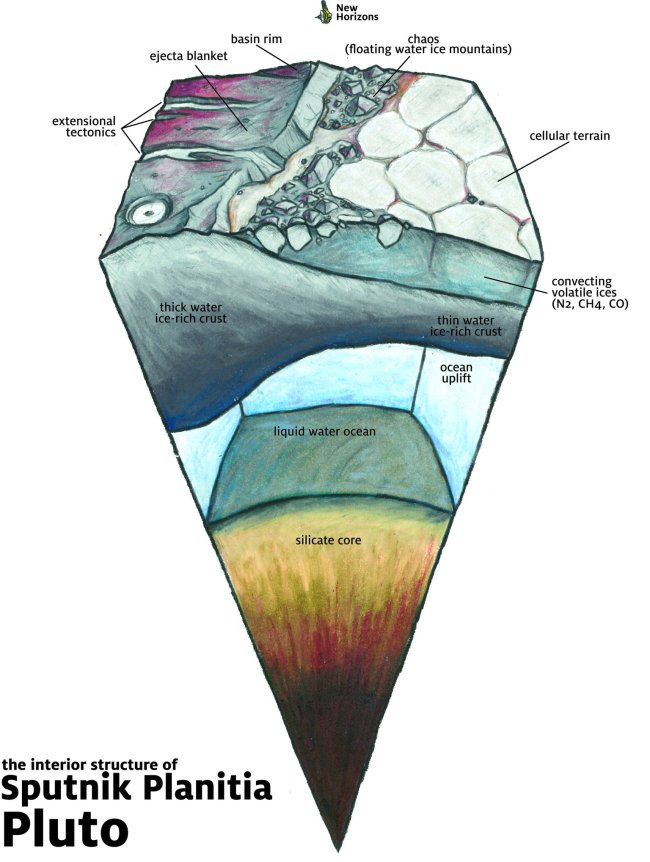 Graphic depicting the geological structure of Pluto below Sputnik Planitia. Deep down, a liquid water ocean is now thought to exist. Image Credit: James Keane