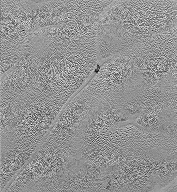 "X marks the spot: the ""X"" in this close-up view of Sputnik Planum, from the new long image swath, is thought to be where four convection cells met together in the nitrogen ice, but have since mostly disappeared. Photo Credit: NASA/JHUAPL/SwRI"