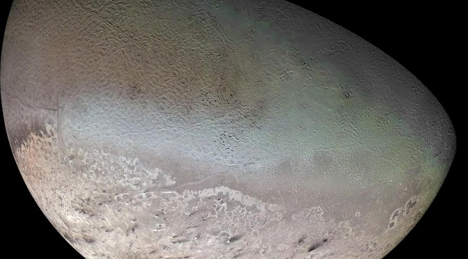Triton: a cuckoo around Neptune