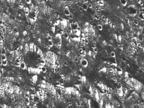 Dark terrain in Galileo Regio. © NASA