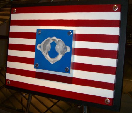 Atlas vertebrae American flag chiropractic artwork