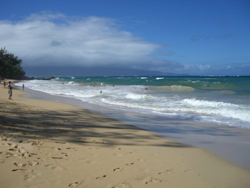 Surfing the beach in Paia Hawaii
