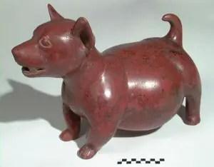 techichi dog