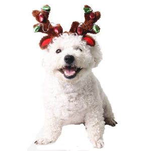 small dog reindeer antlers