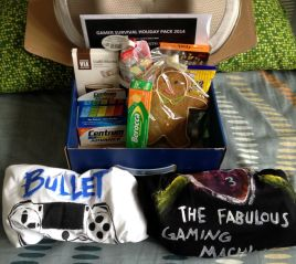 Destiny Gaming Survival Package for Christmas