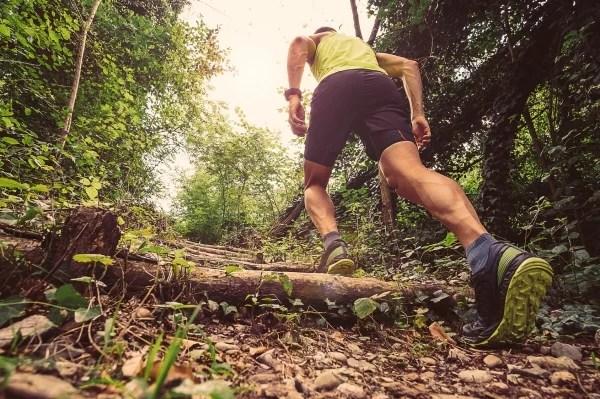 Trail : Comment s'améliorer en montée ?