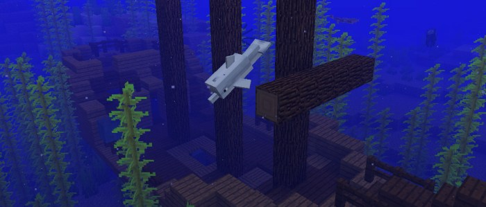 Minecraft Aquatic Update mise à jour PS Vita