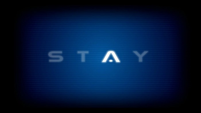Unboxing Stay PS Vita