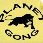 Bilan mensuel PlanetGong