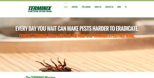 terminix new orleans website design image
