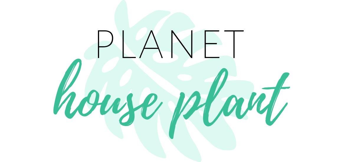 Planet Houseplant