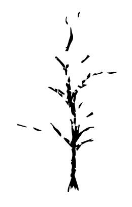 tree_light_vector