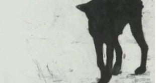 Headcount - Lullabies For Dogs Artwork