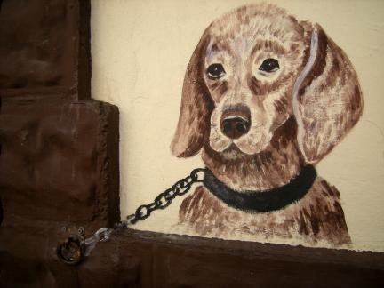 walldog
