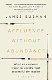 the cover of Affluence Without Abundance