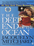 the cover of The Deep End of the Ocean
