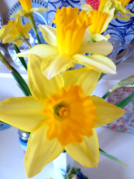 Daffodils on dresser