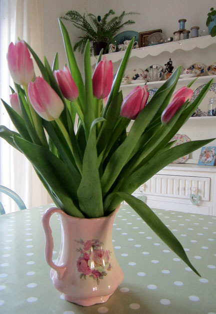 Pink tulips for a birthday